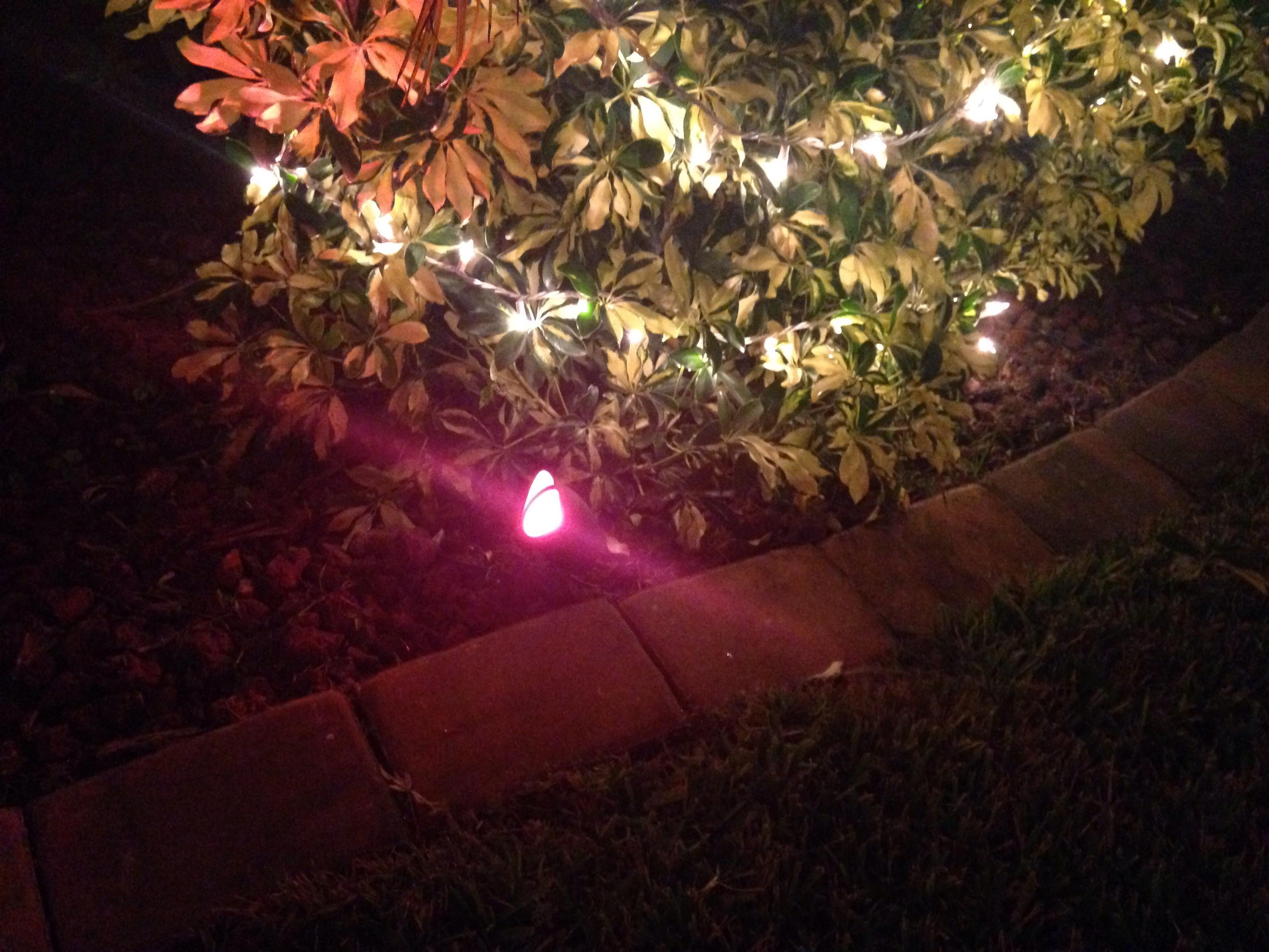 Christmas tree lighting tips - Christmas Lighting Hacks And Tips