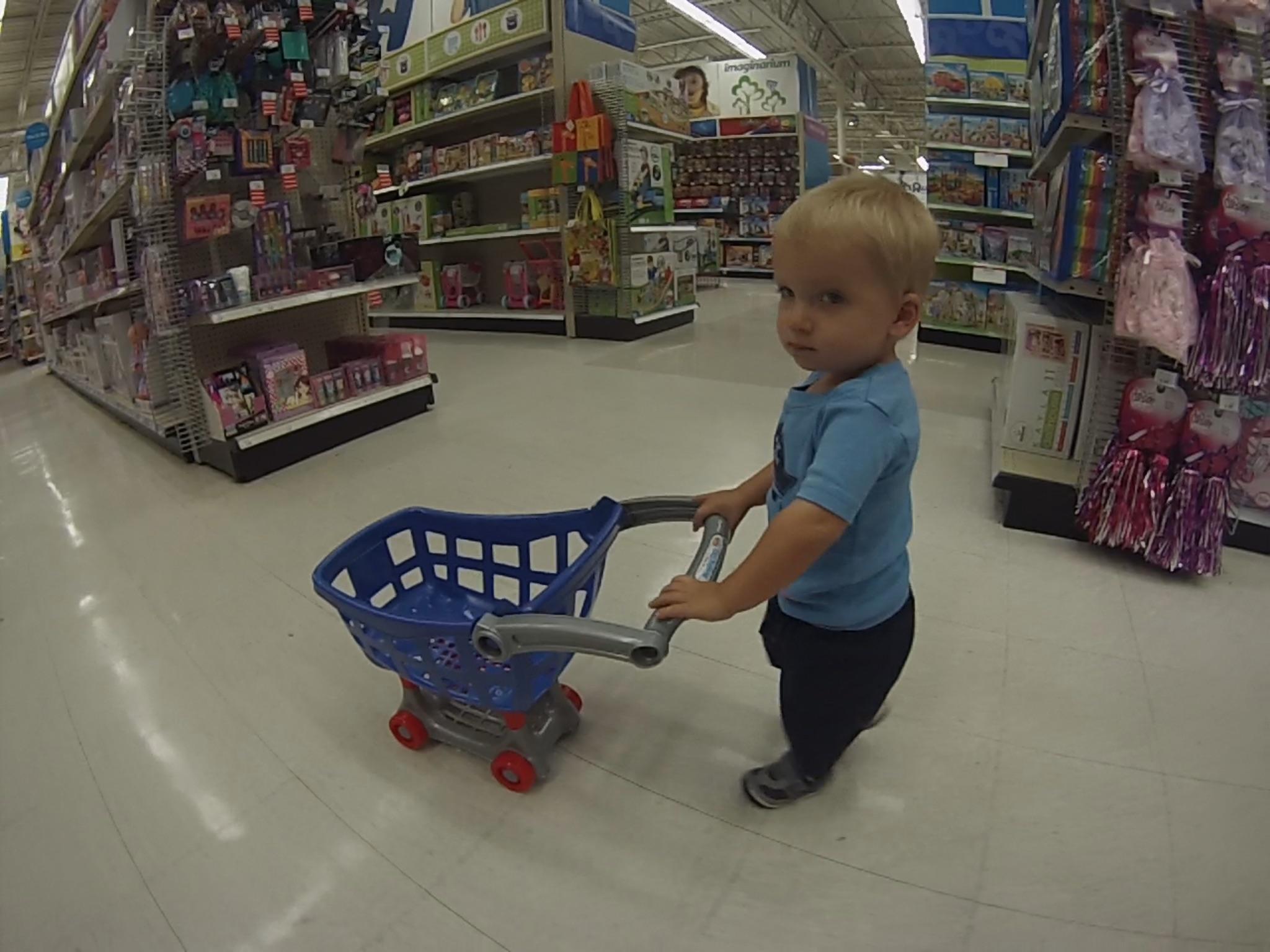 Ollie shopping