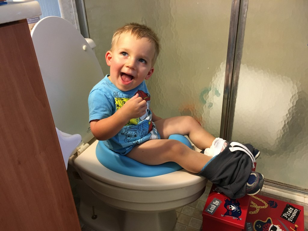 Dad's Guide to Potty Training Success