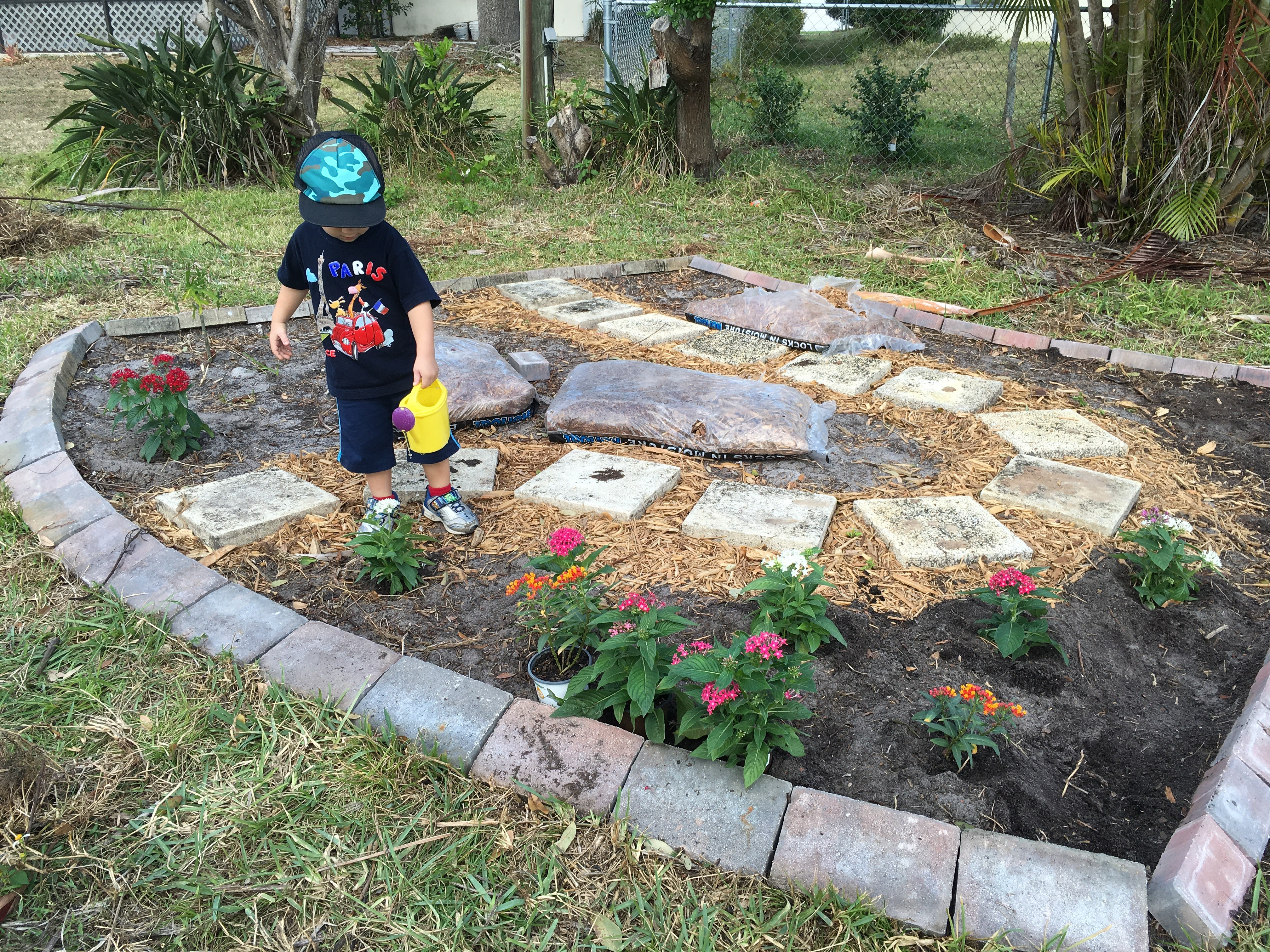build a butterfly garden that helps prevent entitlement dad the mom