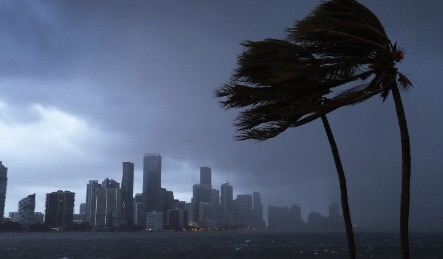 5 Positive Effects from Hurricane Irma